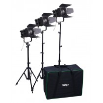 LedGo D600 fresnel kit (w/ three lights)